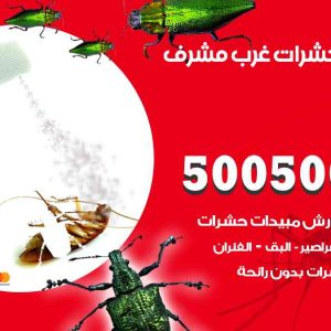 مكافحة حشرات غرب مشرف