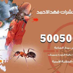 مكافحة حشرات فهد الأحمد
