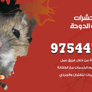 رقم مكافحة حشرات وقوارض شاليهات الدوحة